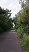 road,
