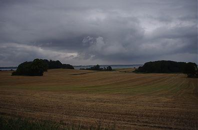 Fields with freshy cut crops